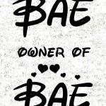 Bae_owner_of_bae_komplet_svetlo_ozadje_preview_design_svetla