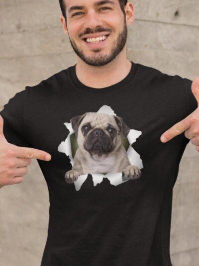Mops - pug