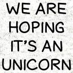 We_are_hoping_its_a_unicorn_svetlo_ozadje_preview_design_svetla