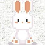 White-rabbit-preview-dizajn