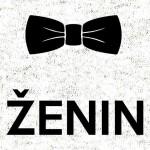 Zenin_1_svetlo_ozadje_preview_design_svetla
