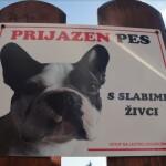 Pozor prijazen pes s slabimi zivci tabla za na ograjo garderoba 2