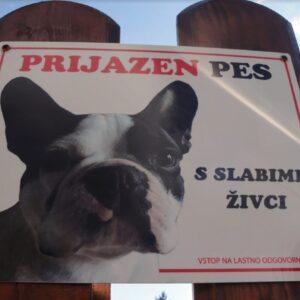 Pozor prijazen pes s slabimi zivci tabla za na ograjo garderoba foto paneli - slike - table foto paneli - slike - table 3