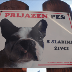 Pozor prijazen pes s slabimi zivci tabla za na ograjo garderoba ovratnica in rutka z unikatnim tiskom 10