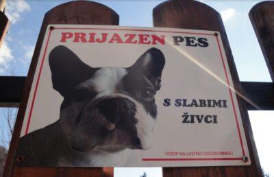 Tabla pozor pes s sliko