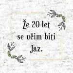 Ze-20-let-se-ucim-biti-jaz-preview-dizajn