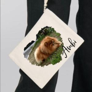 Torbica za pasje dokumente